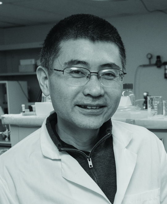 Photo of Dr. Yu Lei