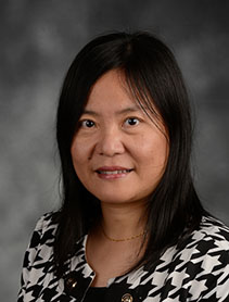 Photo of Prof. Dr. June Wei